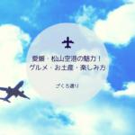 愛媛県松山空港のイメージ